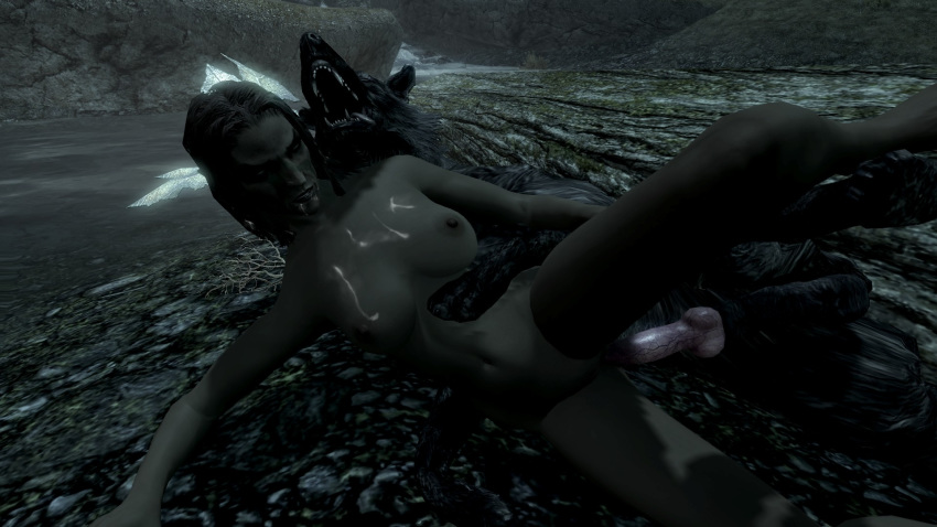 skyrim scouts-many-marshes The witcher 3 lady of the lake